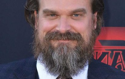 How Much Is David Harbour Worth?