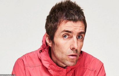 Liam Gallagher Unveils New Date for Free NHS Show After Two Postponements