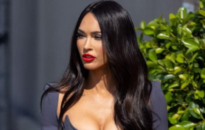 Megan Fox jokes she wants to take her famous celebrity lookalike out for dinner