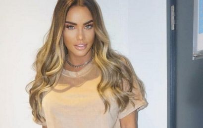 Katie Price steps back from social media after trolls say alleged attack faked