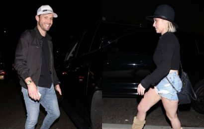 Hayden Panettiere parties with ex-boyfriend Brian Hickerson over a year after abuse allegations against him