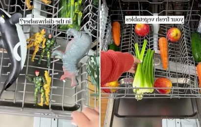 Mum shares her top dishwasher hacks but not everyone's convinced