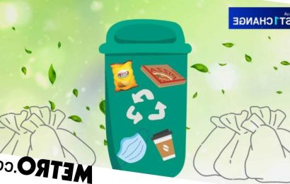 15 common recycling myths debunked